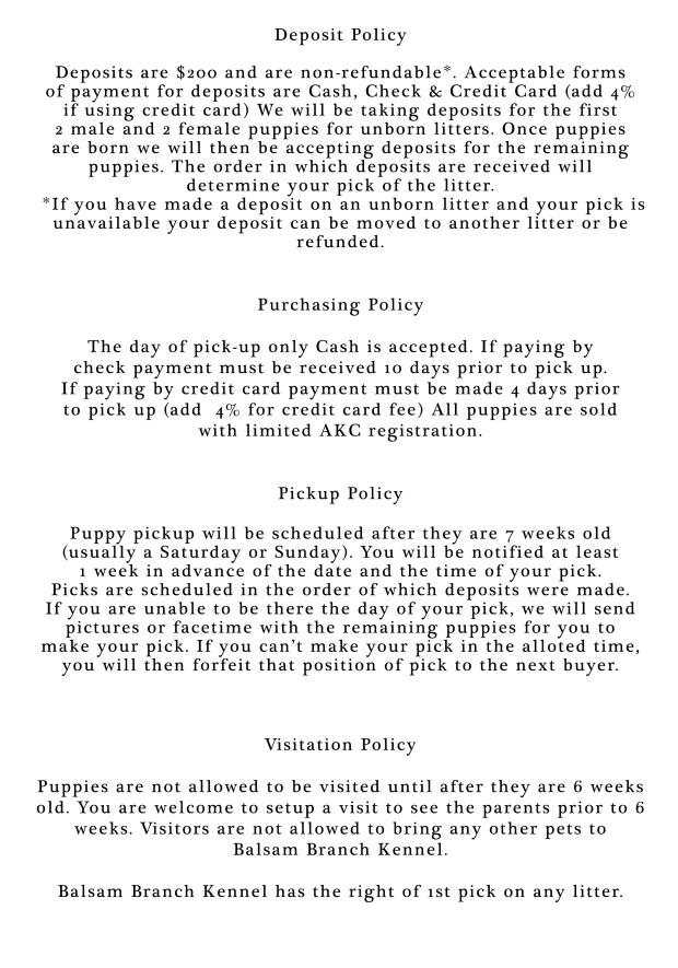 bbk policy 2018