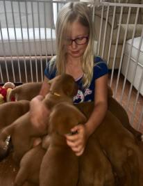 Vivian in a puppy pile